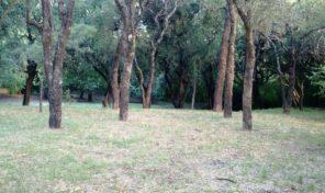 Terreno sobre ruta en Villa de Las Rosas